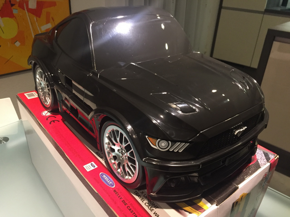 Click image for larger version  Name:MustangCase04.jpg Views:18 Size:297.2 KB ID:72115